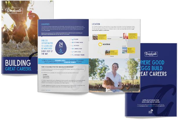 doug-hall-brochure