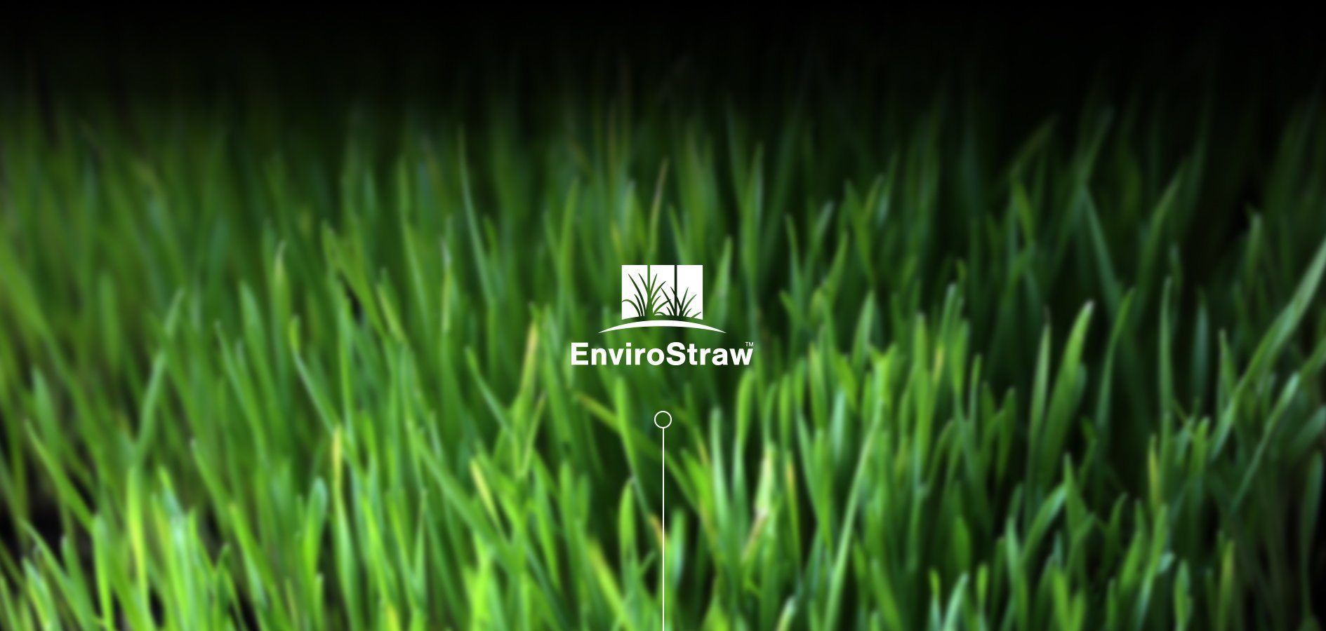 Graphic Design for Brand for Envirostraw by Sketch Corp.